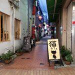 猫カフェ神戸・三宮【ねこまみれ 神戸南京町店】は抱っこOKで猫大量!ネコ様に遊んでもらった