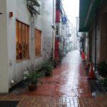 超大雨!どしゃ降り過ぎて数m歩いただけで足元びしょびしょ…お昼は初がんこでヘレカツ