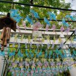 高砂市/鹿嶋神社の夏の風物詩☆参道の風車(かざぐるま)がインスタ映え
